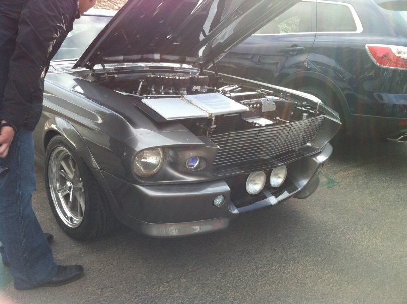 Stang's Front